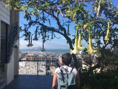 Photo : Vue sur Alcatraz San Francisco