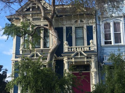 Maison victorienne à travers un feuillage San Francisco