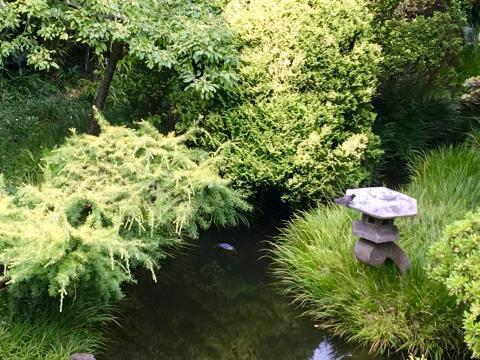 [Photo : jardin japonais ou Japanese Tea Garden à San Francisco]