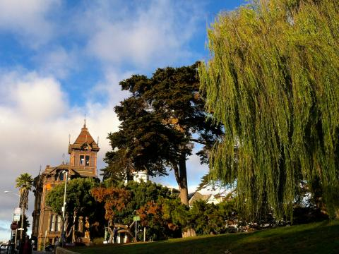 [Photo : Alamo Square maison victorienne San Francisco]